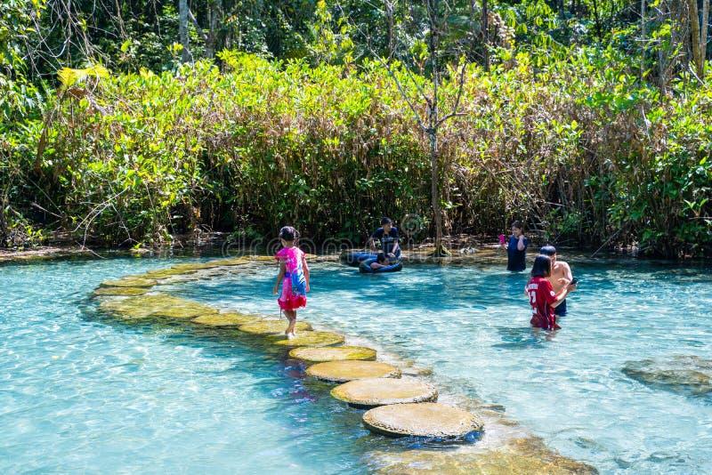 12月22日2018泰国:† Pa吨Nam†鲜绿色水在密林 库存照片