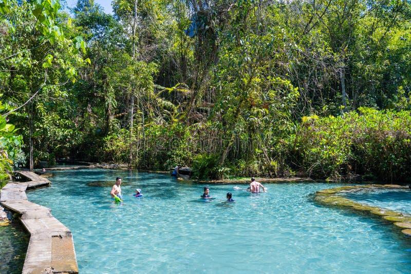12月22日2018泰国:† Pa吨Nam†鲜绿色水在密林 免版税库存图片