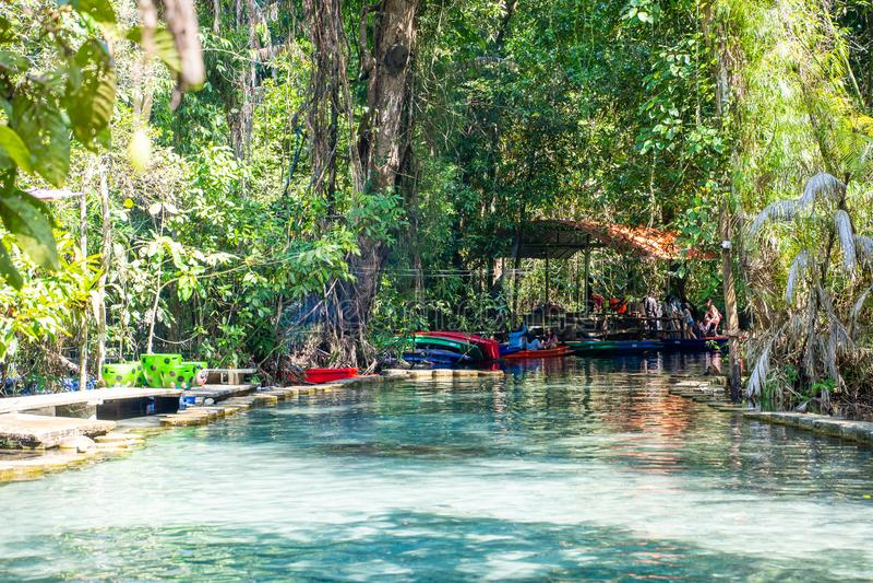 12月22日2018泰国:† Pa吨Nam†鲜绿色水在密林 免版税图库摄影