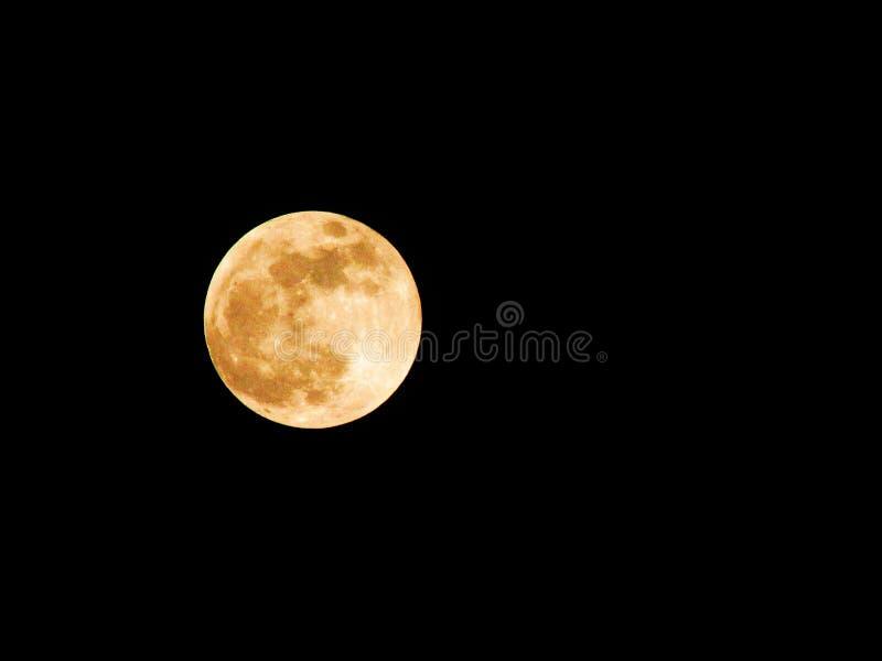月/月球Llena 免版税库存图片