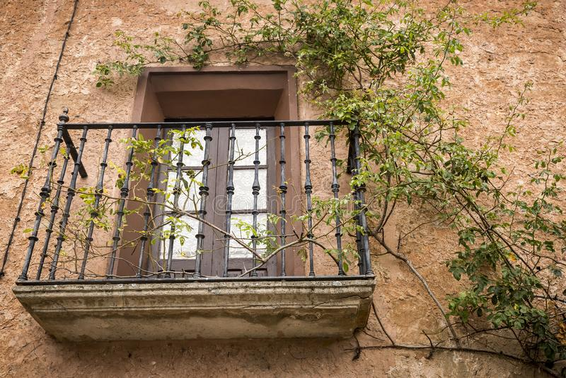 有一个树爬行物的古色古香的阳台在棕色墙壁上 免版税库存图片