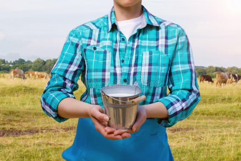 有一个桶的挤奶的妇女牛奶 库存照片