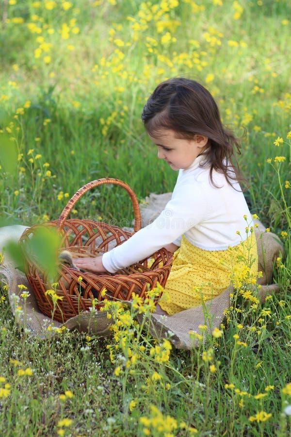 有一个篮子的女孩在雏菊的鸭子 免版税图库摄影