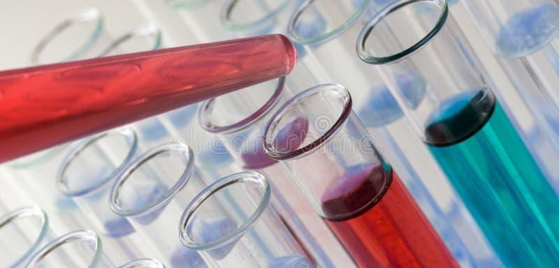 有一个红色和蓝色液体样品的实验室试验管 免版税库存图片