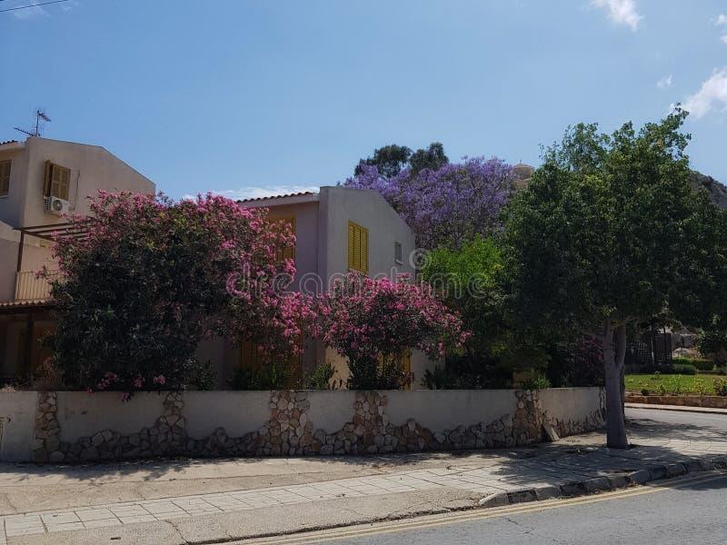有一个美丽的开花的庭院的议院 库存图片