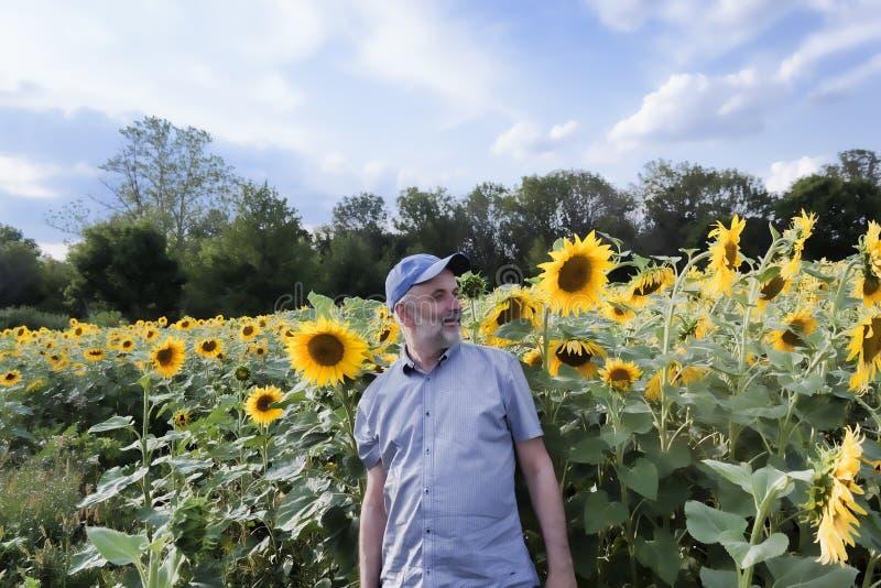 有一个胡子的成熟人在一个领域的一个棒球帽用向日葵 免版税库存照片