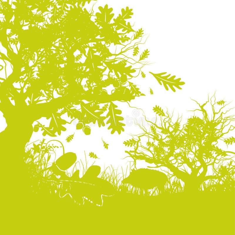 有一个野公猪的橡木森林 向量例证