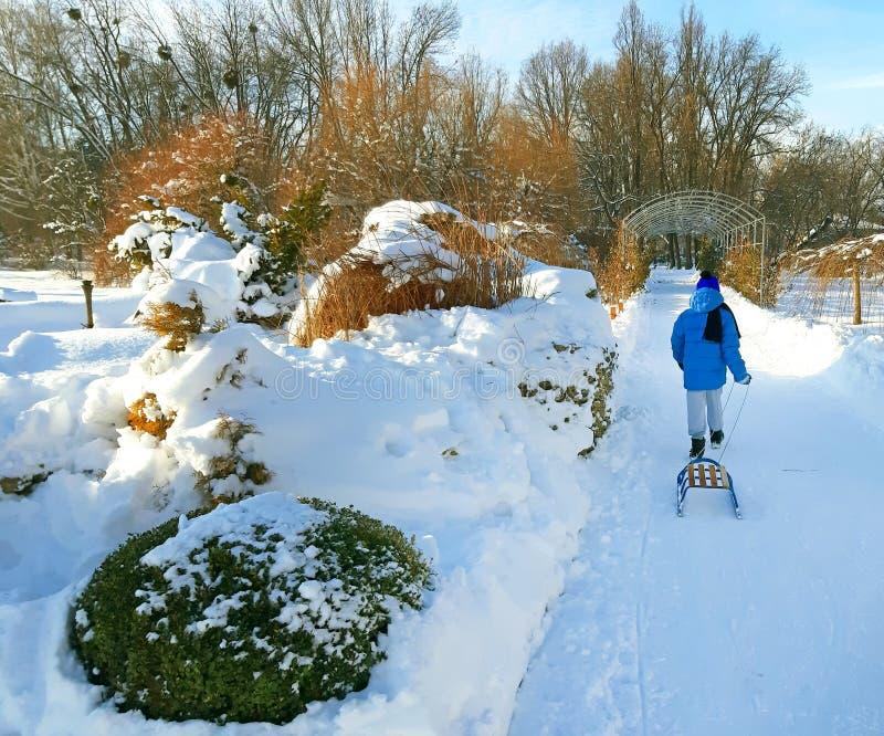 有一个雪撬的一个男孩在公园 库存图片