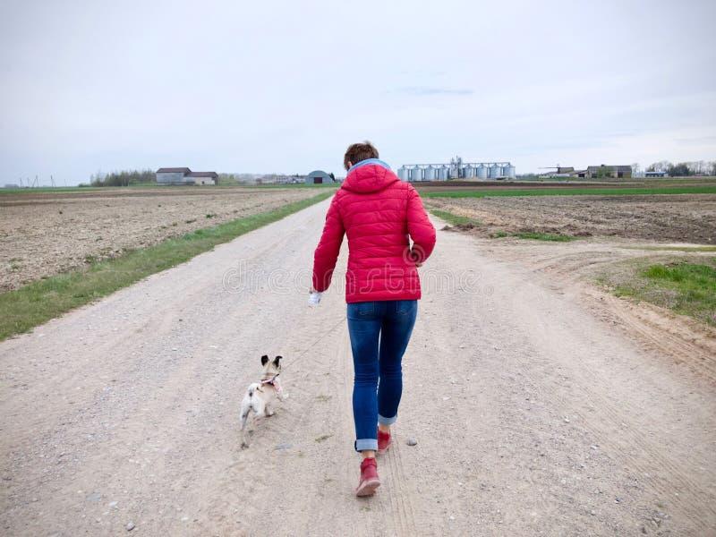 有一件红色夹克的妇女去与一个哈巴狗的walkies在石渣道路 免版税库存图片