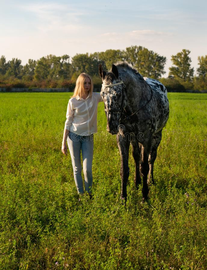 有一匹马的美丽的年轻女人,在一个绿色夏天草甸 库存图片