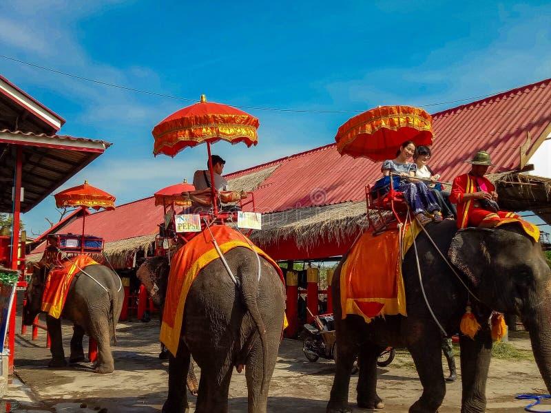 有一头大象的游人在Wat Chaiwatthanaram寺庙在Ayuthaya历史公园,联合国科教文组织世界遗产在泰国 免版税图库摄影