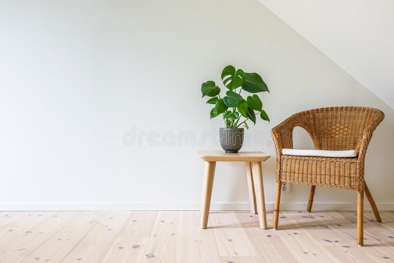 有一张木桌的藤条扶手椅子与一棵盆的植物 图库摄影