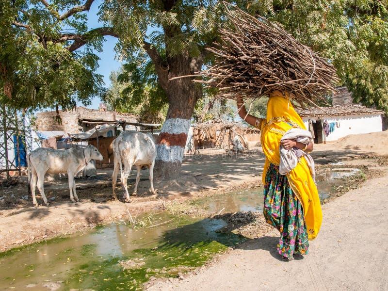 有一担子的Rajasthani妇女 库存图片