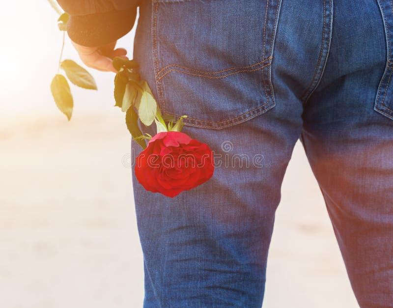 有一朵玫瑰的人在他的后面等待的爱后 在海滩的浪漫日期 免版税库存照片
