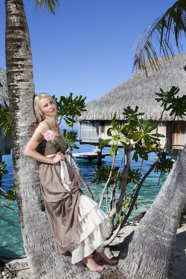 有一朵玫瑰的美丽的妇女在棕榈树 Bora-bora,塔希提岛 免版税库存图片