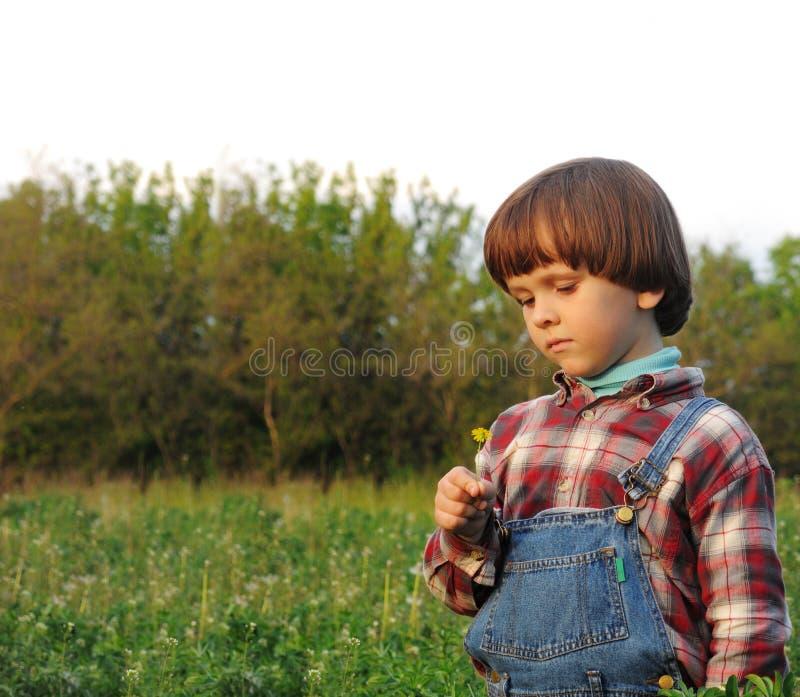 有一朵黄色花的男孩 图库摄影