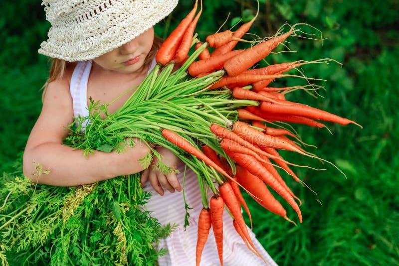 有一束的女孩新近地红萝卜 免版税库存照片