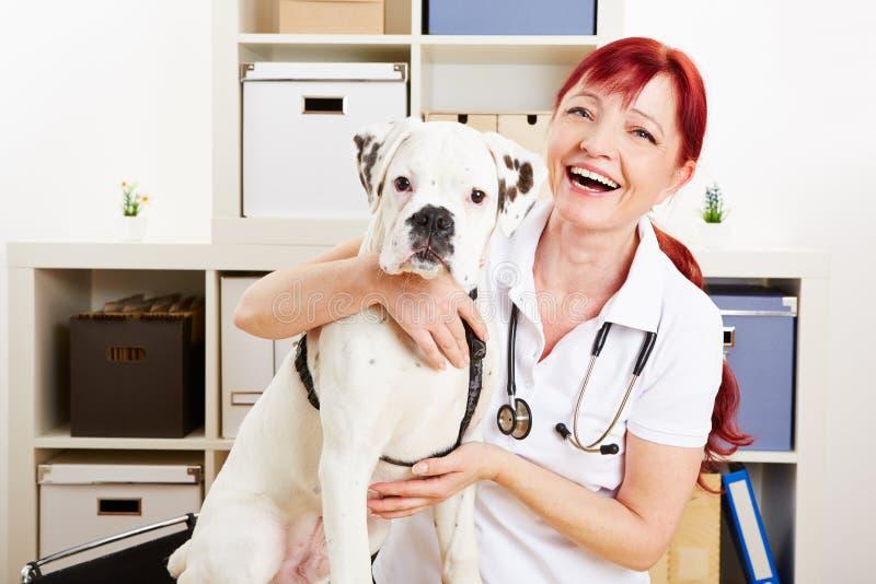 有狗的愉快的兽医 免版税库存图片