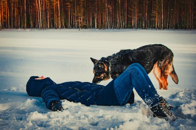 有一条狗的女孩在冬天湖的岸 免版税库存图片