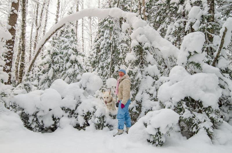 有一条狗的妇女在一个积雪的冬天森林里 库存照片