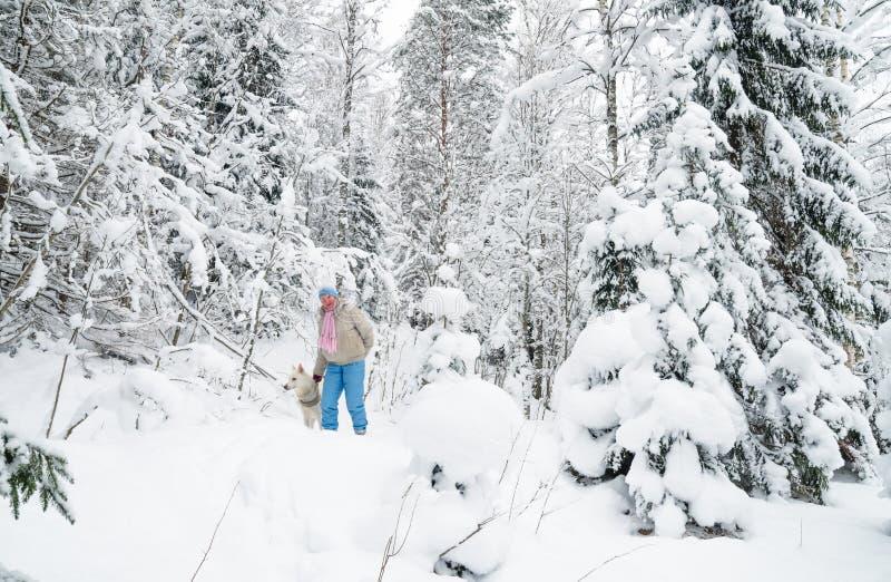 有一条狗的妇女在冬天木头的步行 免版税库存图片