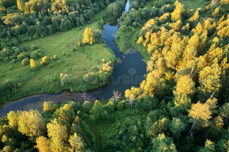 有一条绞的河的森林日落的 与寄生虫的航拍 免版税库存图片