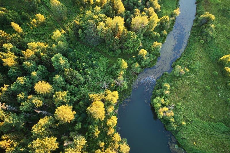 有一条绞的河的森林日落的 与寄生虫的航拍 图库摄影