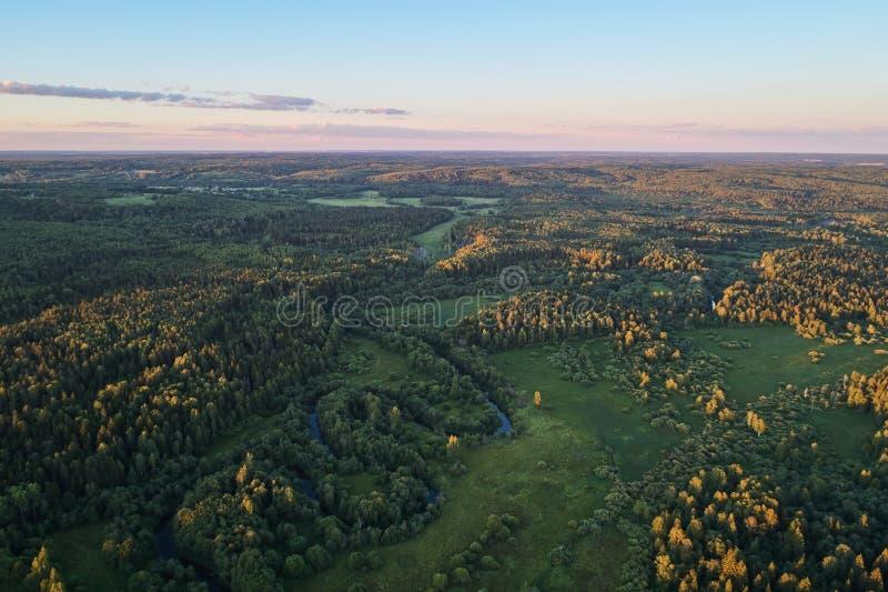 有一条绞的河的森林日落的 与寄生虫的航拍 库存照片