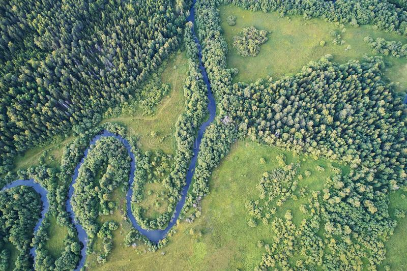 有一条绞的河的森林日落的 与寄生虫的航拍 免版税库存照片