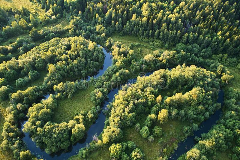 有一条绞的河的森林日落的 与寄生虫的航拍 免版税图库摄影
