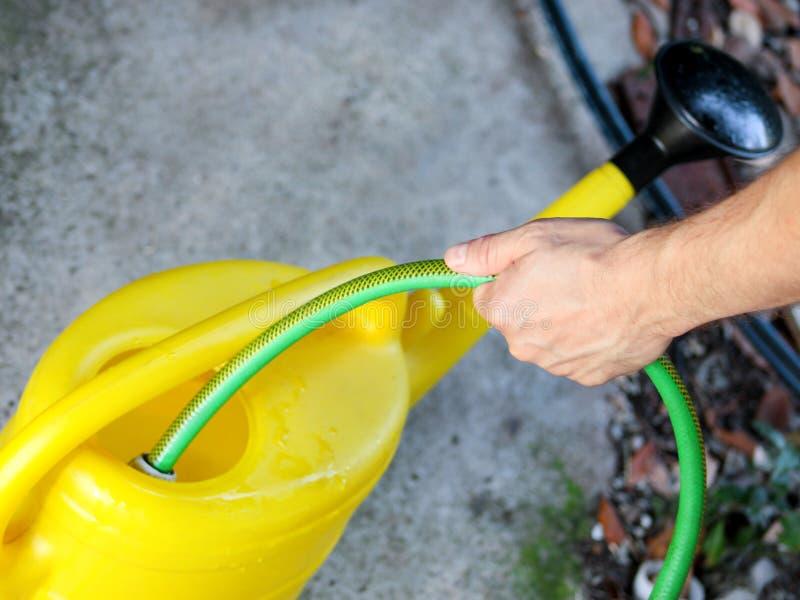 有一条绿色水管的花匠倾吐在黄色水桶的水 庭院黄色水为浇灌的花能 库存图片