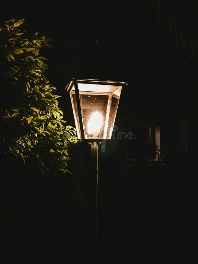 有一棵树的街灯在它旁边在公园 库存图片
