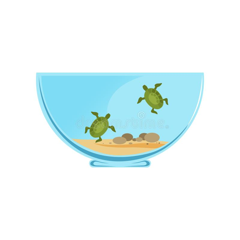 有一点游泳乌龟的碗玻璃容器 海洋爬行动物概念 动物国内公牛的母牛 家庭装饰 图表传染媒介 向量例证