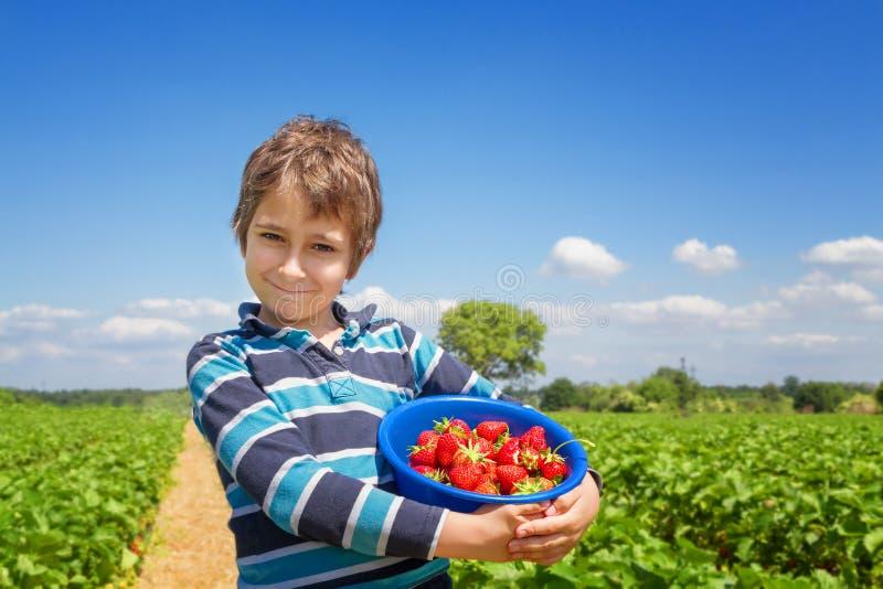 有一片草莓庄稼的男孩在他的手上 库存照片