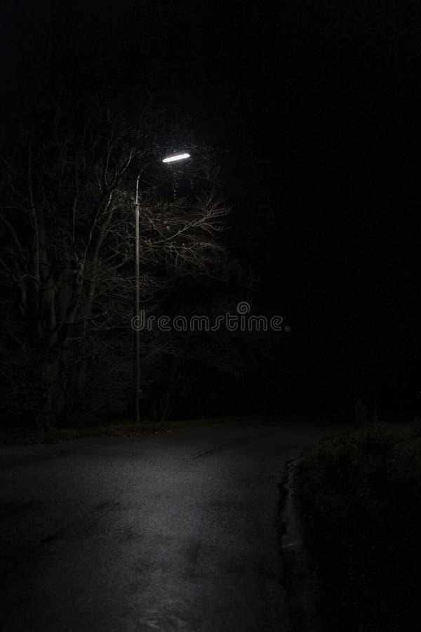 有一盏唯一夜灯的一个黑暗的公园 免版税库存图片