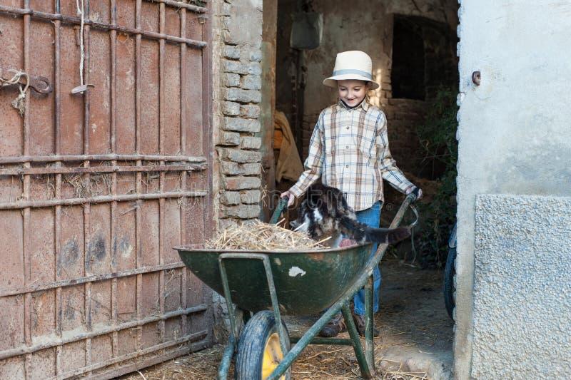 有一辆独轮车的孩子有猫的 免版税库存照片
