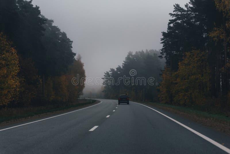有一辆黑暗的汽车、秋天树和雾的柏油路 葡萄酒,关于 免版税库存图片