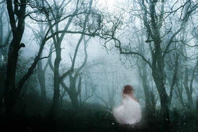 有一鬼的womanin的一个黑暗,鬼的森林一件白色礼服,在一个冷的有雾的冬日 老艺术性的葡萄酒编辑 库存照片