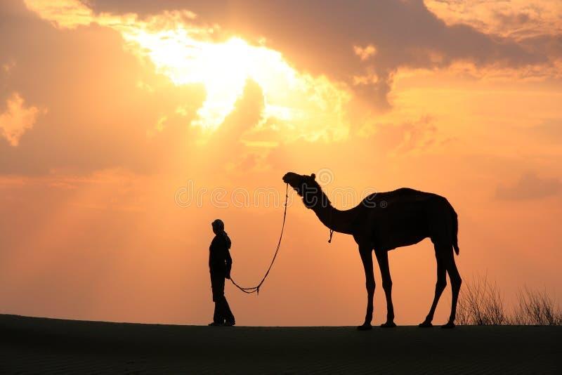 有一头骆驼的在日落,在贾伊斯附近的塔尔沙漠现出轮廓的人 库存图片