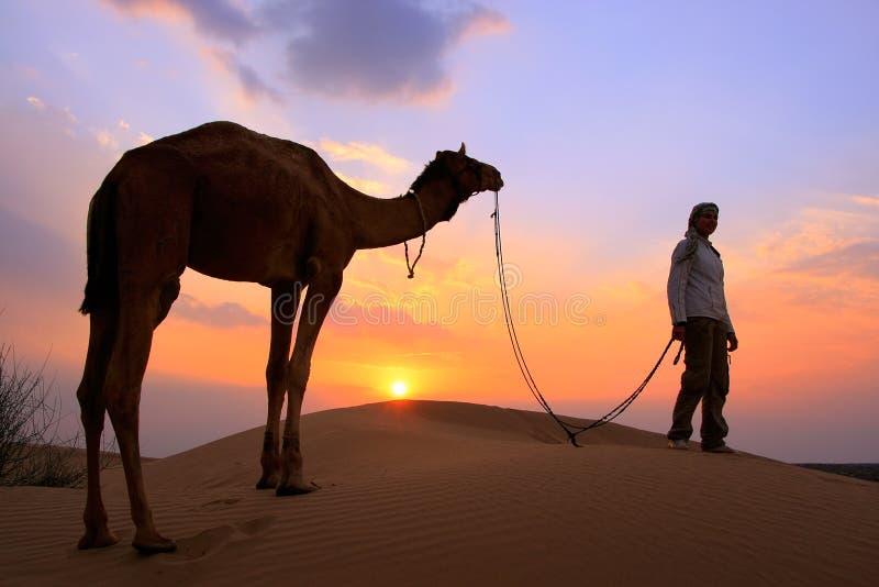 有一头骆驼的在日落,在贾伊斯附近的塔尔沙漠现出轮廓的人 图库摄影