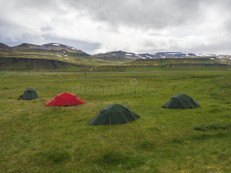 有三个绿色帐篷的Hornvik露营地和一个红色和看法在美丽的Hornbjarg峭壁在遥远的自然保护与绿色 库存图片