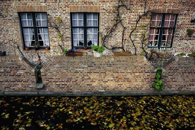 有三条窗口和运河的砖房子,在它与落的叶子,布鲁日,比利时前 图库摄影