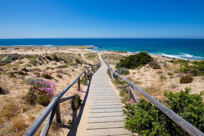 有下来栏杆的木走道对海岸 免版税库存图片