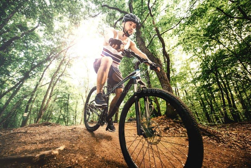 有专业保护盔甲骑马登山车的骑自行车者在岩石森林足迹a 免版税库存图片