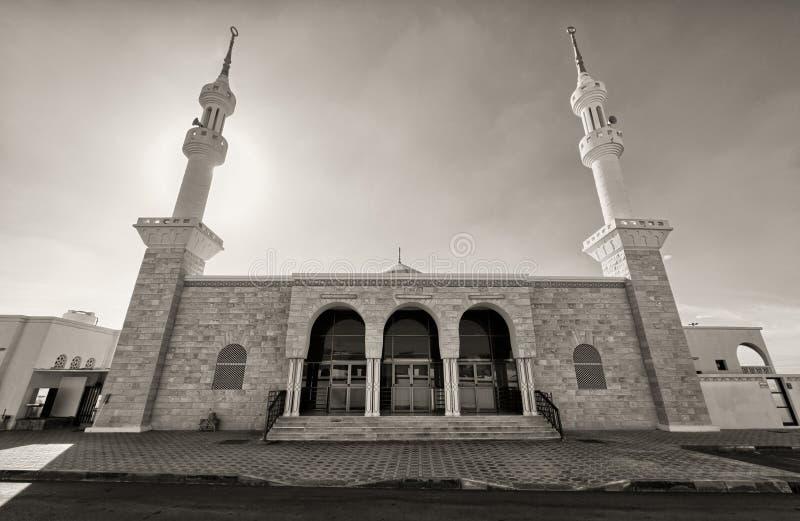 有两座尖塔的黑白清真寺 免版税图库摄影