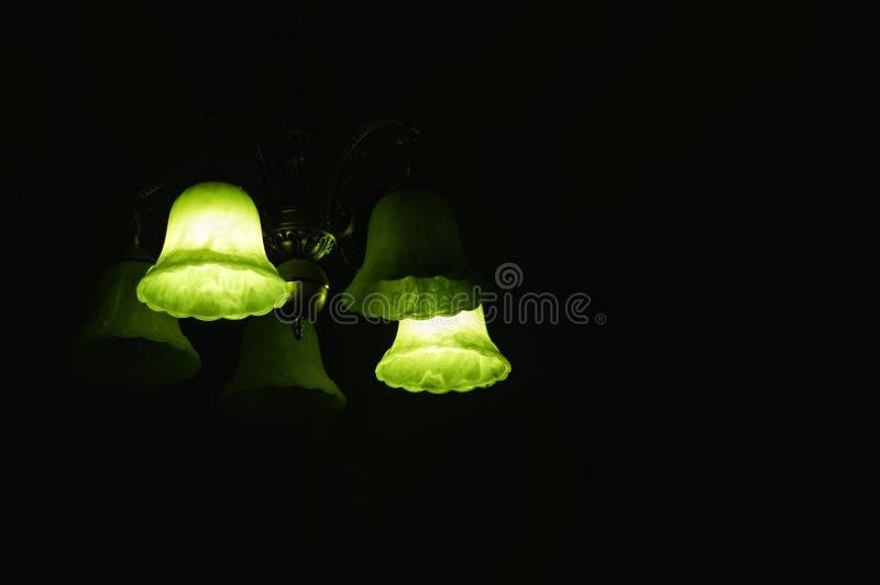 有两绿色电灯泡的天花板灯打开了 免版税库存图片