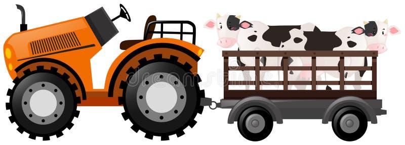 有两头母牛的橙色拖拉机在无盖货车 库存例证