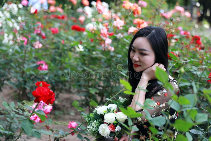 有书的参观一个玫瑰园的美丽的年轻女人和袋子 图库摄影