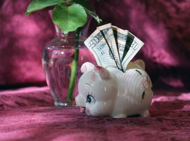有二十美元和美丽的小存钱罐在背景中上升了 免版税图库摄影