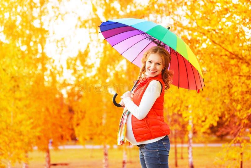 有五颜六色的伞的愉快的孕妇在秋天步行 免版税库存图片